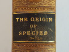 Charles Darwin - The Origin of Species - 1884