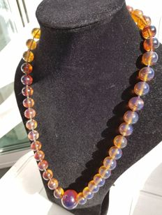 Blue Sumatra Amber fluorescent beaded necklace, untreated, weight 86.3 grams certified by (FGA) expert