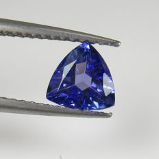 Tanzanite - 0.80 Ct - No reserve Price