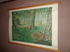 """Old nature school poster with forest scene on linen by Koekoek """"In the forest"""""""
