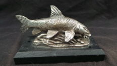 Beautiful old sculpture of a barbel silver-plated tin - fishing - on a wooden base - fly fishing