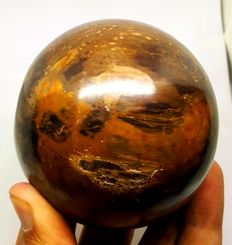 Fine Beautiful Ball made of Natural Petrified wood - 254 mm - 700 gm