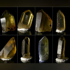 Collection of Large Zambian Citrine Crystals - approx. 43.6 x 22.6 x 18 mm each - 1304.5 ct / 322 gm