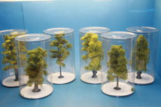 H0 - 6 packages high trees of 22 cm