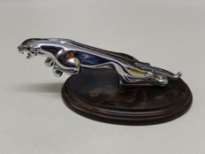 "Jaguar - Chrome Jaguar Mascot Leaper Cat 8"" on Nice Wooden Plinth"