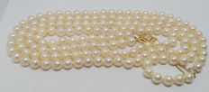 Vintage two-strand necklace of cultured Japanese pearls calibrated to 7.10 Hook clasp in 18 kt yellow gold .  Length 66 cm.