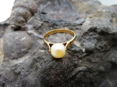 Ring in 18 kt gold - Salt water pearl - Inner diameter: 17.4 mm (approx.)
