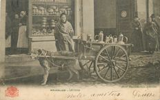 Dog team - Belgium - Brussels - Milk woman - Old postcard from 1905