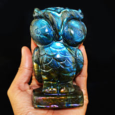Blue & Green Flash Labradorite Owl - 115x60x39 mm - 2461.50 cts