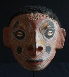 Substitute Skull 'Trophy Skull' from Yamuk of the SAWOS Tribe, Papua New Guinea