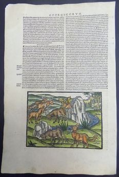 Original post-incunabula folio leaf from Virgil's Georgicorum (Liber III) - 1515