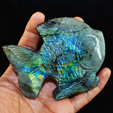 Blue & Green Flash Labradorite Fish - 90x75x22 mm - 1019.00 cts