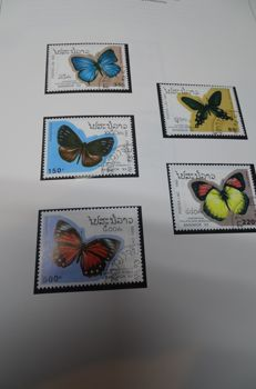 Topical Flora, Fauna - 2 folders with Stamps, series, blocks, various countries