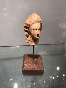 Pretty little terracotta head from the Greek period - 40 x 30 mm