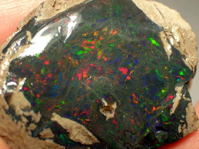 Beautiful Play Of Color Black Opal - 36,92x28,72x14,57mm - 74,90ct