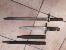 two Spanish bayonets