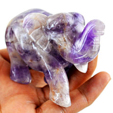 Top Rare Bi-Color Amethyst Elephant - 76x55x37 mm - 800.00 cts