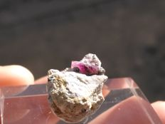 Red Beryl Crystal from Utah (bixbite) - 1,5 x 1,2 x 1 cm
