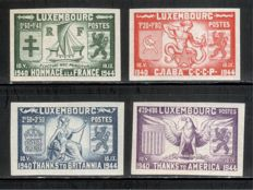 Luxembourg 1906/1953 – selection of sets and blocks