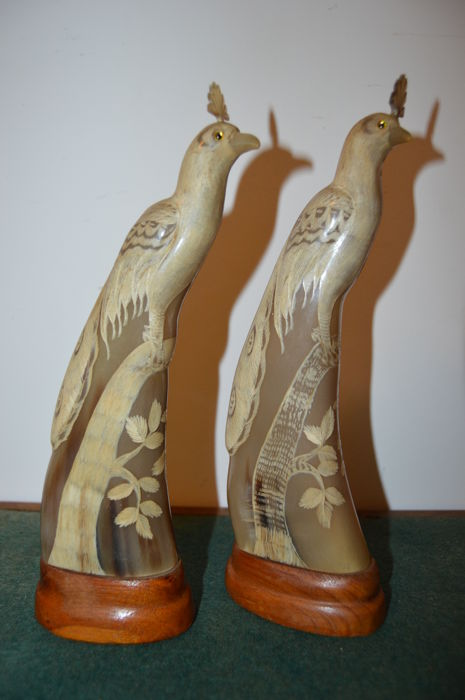 Chinese Carved Horn Peacock Pair - China or Thailand - second half 20th century