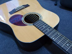New Richwood 12-string electro-acoustic handmade guitar, limited edition, nice natural edition