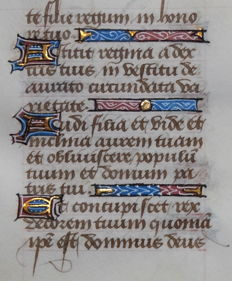 Manuscript; Original leaf from an illuminated manuscript - 15th century - 1463