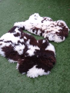 Fine pair of brown-spotted Sheepskins - Ovis aries - 75 x 125cm  (2)