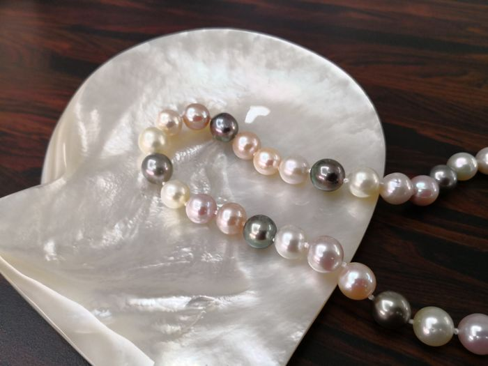 Necklace of cultured multi-colour, natural Pearls, Tahiti, Australian and Fresh water, 39 round pearls, high lustre and orient.