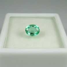 Emerald - 0.66 Ct - No reserve price