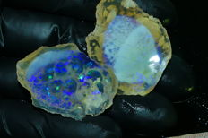 Natural Rough Lightning Ridge Crystal Opal - Split with Fantastic Fires - 64,90 Cts (2)