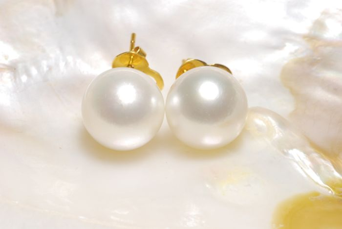 13.1 mm Round South Sea Pearl Earstud 14K Gold - Authenticity Certificate Included