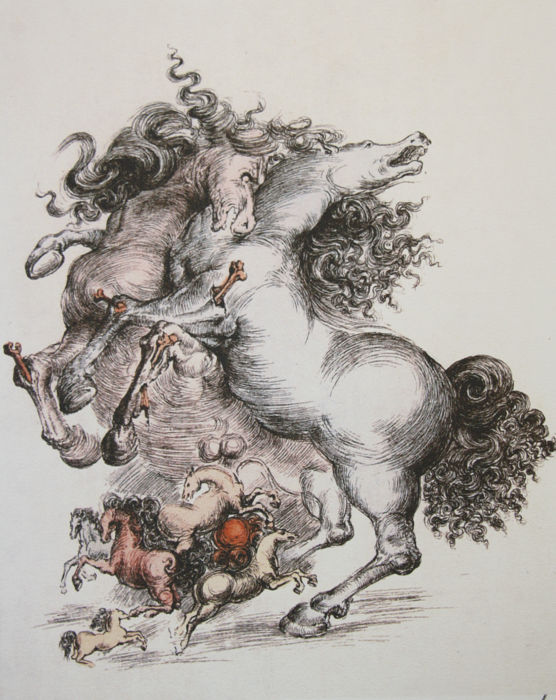 Salvador Dalí (after) - Horses