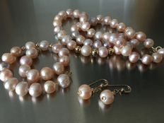 Necklace, bracelet  and earrings of freshwaterpearls and 14k golden beads, elements and clasp
