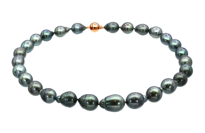 Lustrous 11x14.1mm Tahitian Pearl Necklace Featuring a Rose Gold Ball Clasp  ** NO RESERVE PRICE **
