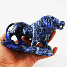 Fine Genuine Sodalite Lion - 170x62x30 mm -2025 Cts