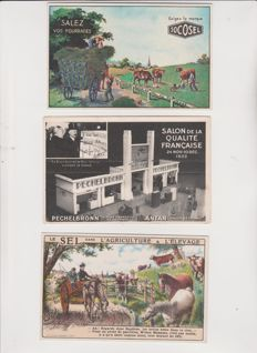 lot of 31 old advertising postcards of the 1900s to 1940