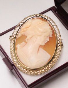 14 kt gold brooch/pendant with cameo, measurments: 32 x 48 mm.