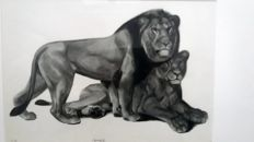 Georges Lucien Guyot - Couple de lions