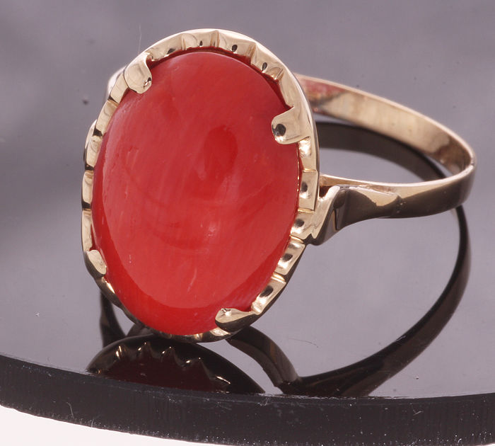 14 kt gold ring set with red coral - 11 x 14.5 mm –  Ring size: 58