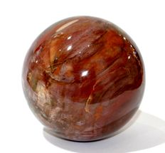 Silicified fossil wood - Sphere - 10.5 cm - 1.960 kg