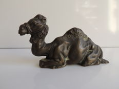 Sleeping camel in bronze - natural brown patina - France - c. 1950