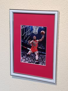 "Dennis Rodman - Basketbal legend Chicago Bulls -  framed photo hand signed by ""The Worm"" + COA"