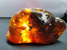 Natural  Mexican Golden Amber - 10 x 5.5 x 3.5 cm  - 76.2 gram
