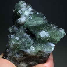 Natural Translucent Cubic Green Fluorite Crystals - 9 x 9 x 8 cm - 475 g