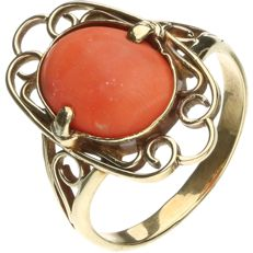 14 kt Yellow gold ring, set with precious coral. - ring size: 17 mm