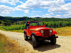 Jeep - CJ-5 Renegade 5000 V8 - 1976