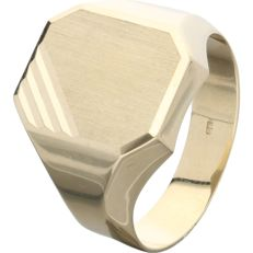 14 kt – Yellow gold signet ring - Ring Size: 20 mm