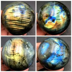 Natural Polished Labradorite Lot - 1394 g (4)