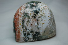 Rare Polished Ocean Jasper - 6 x 5 x 3 cm - 153 gm