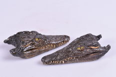 Taxidermy - pair of skin-on Nile Crocodile heads - Crocodylus niloticus - 14cm  (2)